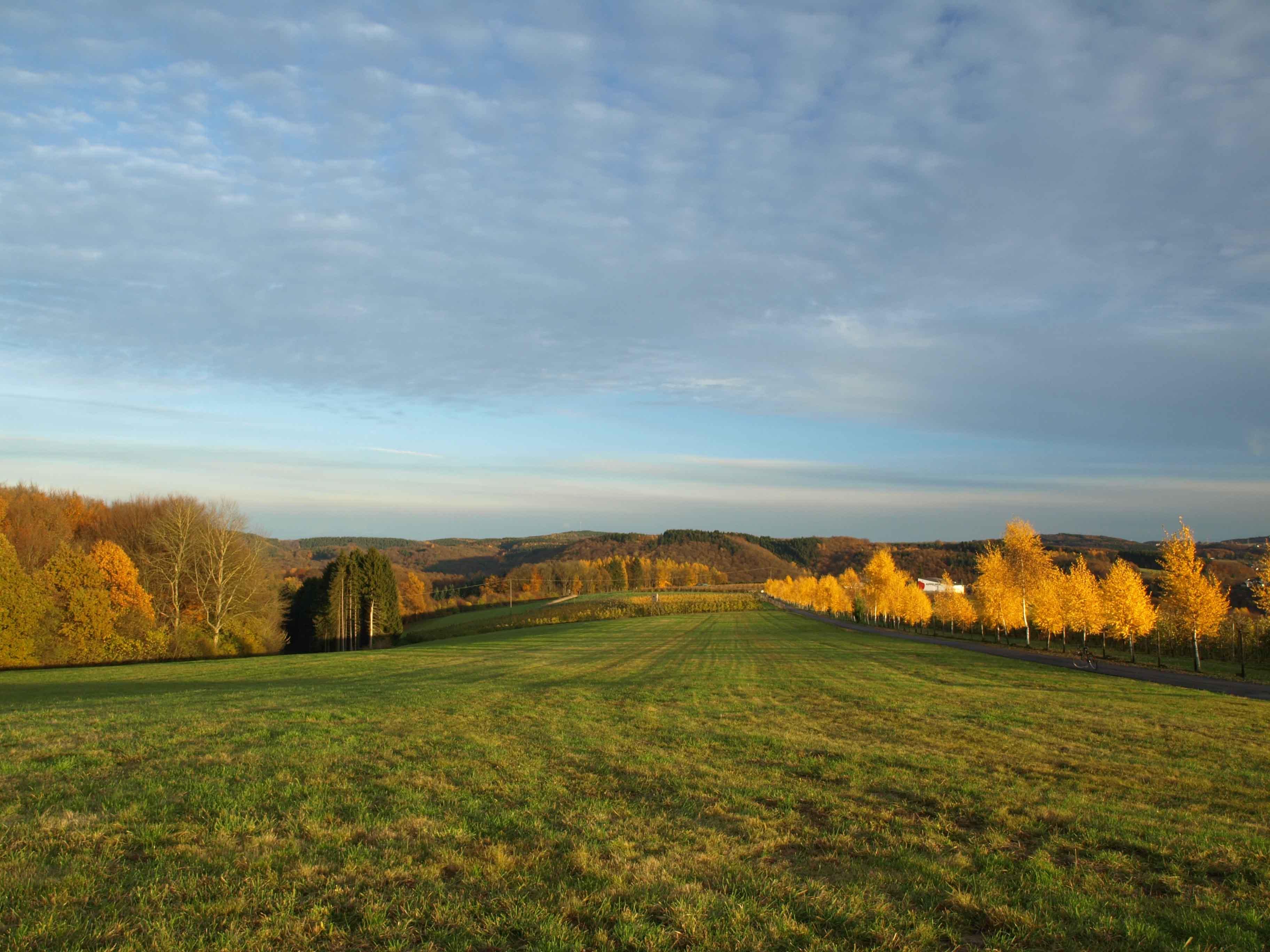 Ausblick vom Appelhof