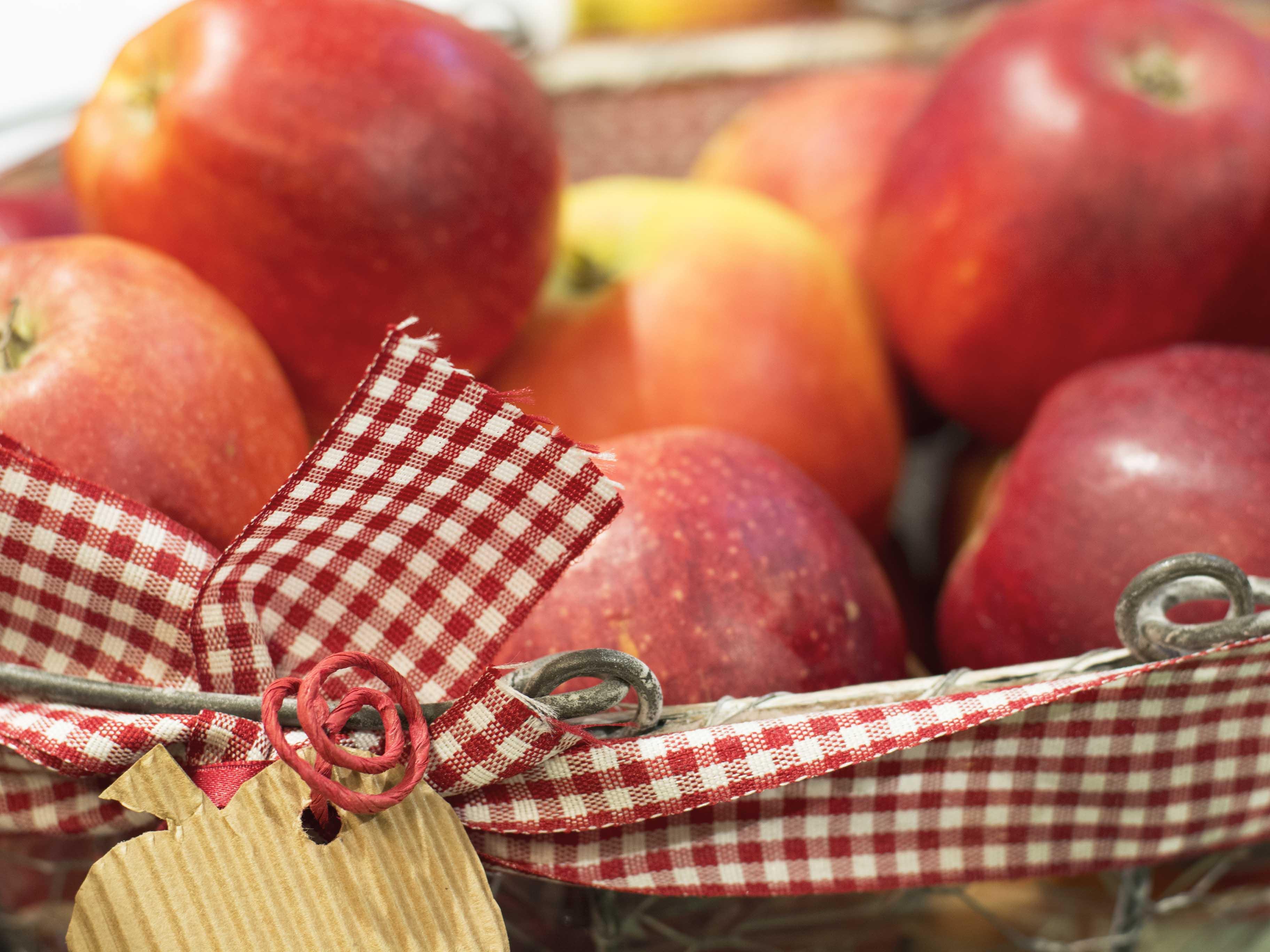 Apfelkorb Appelhof