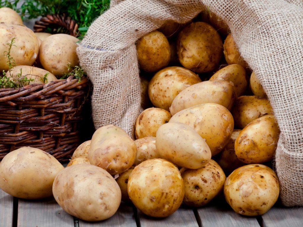 Appelhof | Kartoffel | Kartoffelsack