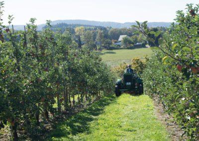 Traktorfahrer vom Appelhof