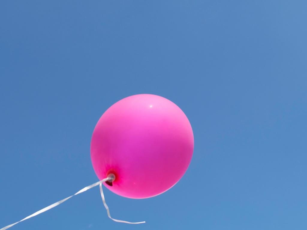 Appelhof_Erdbeerfest-Luftsballon
