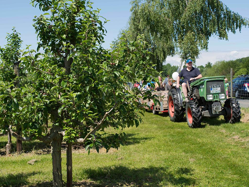 Appelhof_Erdbeerfest-Traktorfahrt