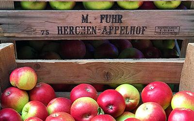 Neue Ernte 2021 – köstliche Äpfel!